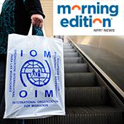 IOM-bag-square